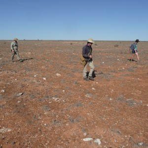 DFN team searching for meteorites