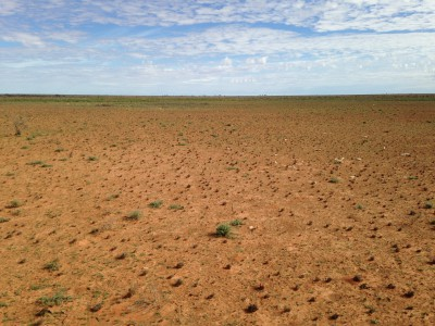 Good meteorite searching ground - the outback