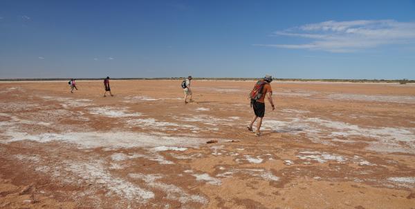 Meteorite searching on a Nullarbor salt flat